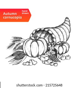 Cornucopia. Horn of plenty with autumn harvest symbols. Hand-drawn card for Thanksgiving day in a sketch style. Isolated on white background. Vector illustration.