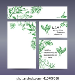Corporate style - herbs. Vector background sketch herbs. Herbs - Bay leaf, dill, thyme, sage, rosemary, Basil, parsley, arugula
