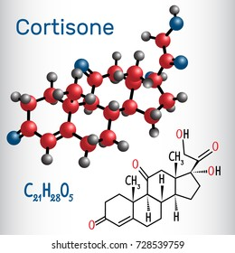 Cortisone, steroid hormone,  - structural chemical formula and molecule model. Vector illustration