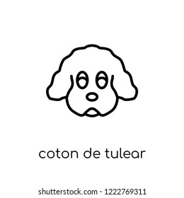 Coton De Tulear dog icon. Trendy modern flat linear vector Coton De Tulear dog icon on white background from thin line dogs collection, editable outline stroke vector illustration