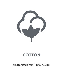 Cotton icon. Cotton design concept from Agriculture, Farming and Gardening collection. Simple element vector illustration on white background.