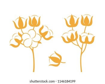 Cotton plant. Isolated cotton on white background. EPS 10. Vector illustration