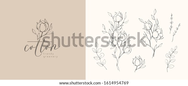 Cotton plant logo and branch. Hand drawn wedding herb, plant and monogram with elegant leaves for invitation save the date card design. Botanical rustic trendy greenery vector illustration