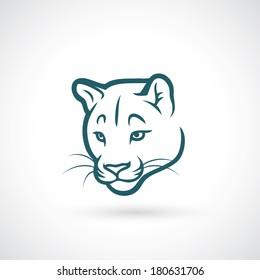Cougar face - vector illustration