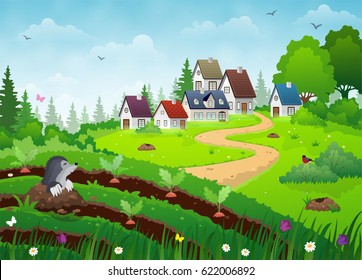 Country village landscape with farm houses, vegetable garden and green lawn.