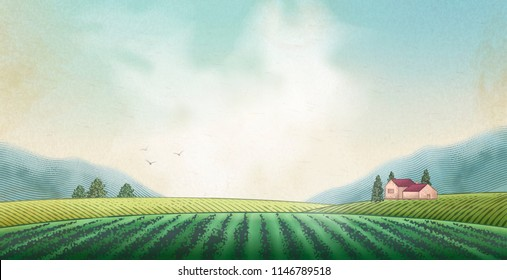 Countryside scenery in engraving style, green field and blue sky