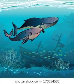 Couple of cartoon whales swim in the blue sea. Underwater vector.
