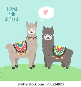 A couple of cute animals llama and alpaca in love standing on a green grass and smiling