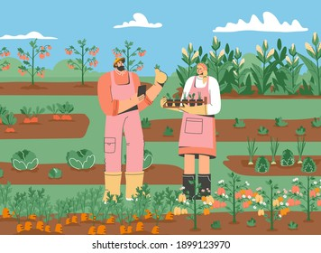 Couple of farmers standing in vegetable garden. Man and woman gathering harvest, planting crops, working on farm. Beds with carrots, peppers, tomatoes, cabbage, corn. Vector character illustration