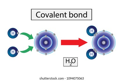 Covalent bond, Chemistry for Education,  Chemical bonding of water.