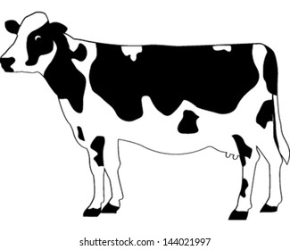 Cow silhouette on different cuts of beef