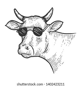 Cow animal in sunglasses line art sketch engraving vector illustration. Scratch board style imitation. Black and white hand drawn image.