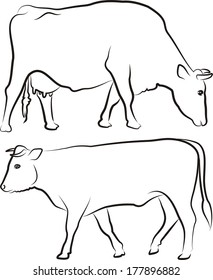 cow bull outlines silhouettes stock vector royalty free 178080194