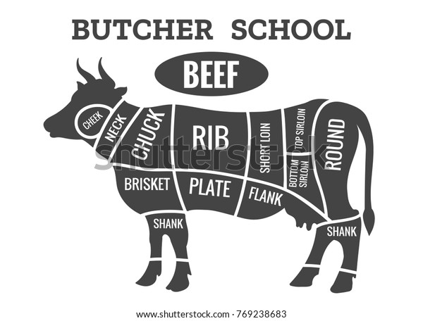 cow butcher diagram cutting beef meat stock vector (royalty alpaca meat cuts diagram cow meat cuts diagram #4