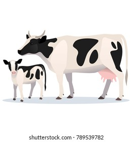 Cow and calf. Vector isolated illustration of adult cow and her baby
