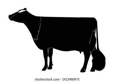 Cow in a continuous line pattern