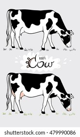Cow. Cow eating grass. Cow isolated, set of vector elements
