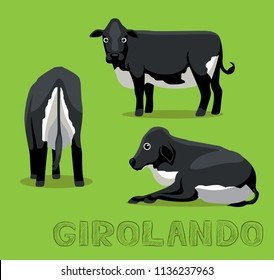 Cow Girolando Cartoon Vector Illustration