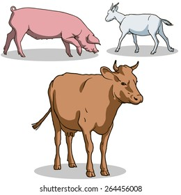 Cow, goat, pig. Vector. Color.