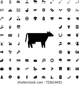 Cow icon. set of filled agriculture icons.
