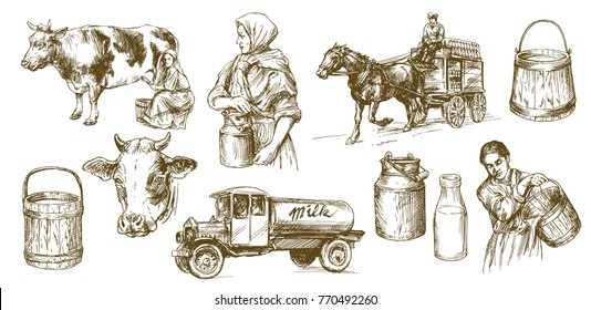 Cow, milk, dairy product. Set of hand drawn illustration.