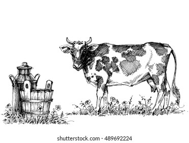 Cow and milk vector set