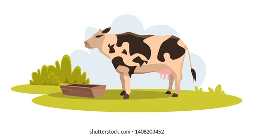 Cow on green pasture flat vector illustration. Farm animal eating grass. Grazing cattle, livestock agricultural industry. Dairy products, meat, beef production. Country life in rural area