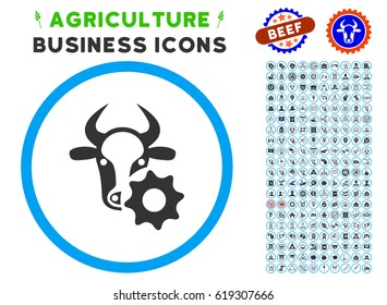 Cow Options Gear rounded icon with agriculture business pictogram clip art. Vector illustration style is a flat iconic symbol inside a circle, blue and gray colors.