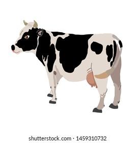 Cow realistic farm animal vector illustration