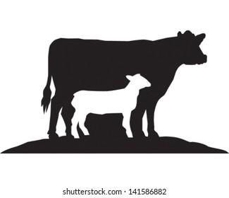 Cow & Sheep