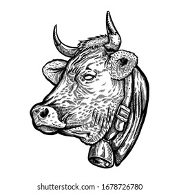 Cow side head engraving art illustration. Cow engraving