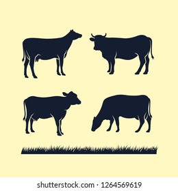 cow silhouette vector icon. black angus vector illustration. cow farm logo design