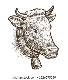 Cow sketch. Hand drawn vintage farm animal vector illustration