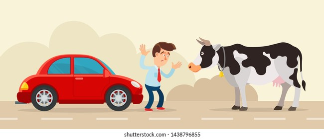 Cow standing on the road and blocking car traffic. Driver confused. Obstacle on the road. Force majeure, unseen circumstances concept. Vector illustration, flat design, cartoon style.