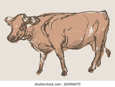 cow vector, hand draw sketch