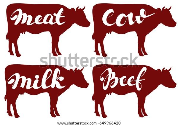 Cow Vector Illustration Sketch Set Vector Stock Vector (Royalty Free