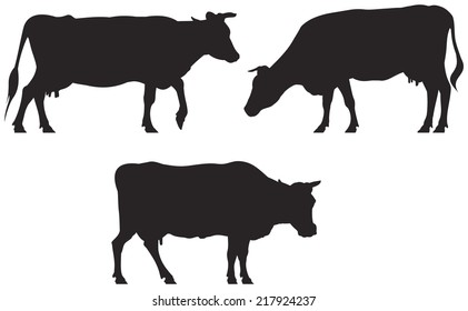 Cow vector silhouettes