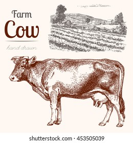 Cow-2. Animal husbandry. Cow and farm in graphic style from hand drawing image. Set of vector scetches.
