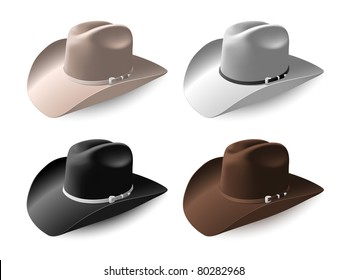 Cowboy hat set eps8