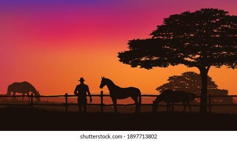 Cowboy und Pferdeherde hinter Holzzaun - Weidetiere und Ränger auf Sonnenuntergang mit Bäumen, Vektorsilhouettenlandschaft