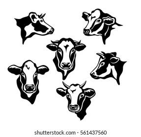 Cows Cattle Portraits silhouettes set