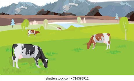 Cows graze in the meadow in the summer. Pasture with cows vector