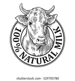 Cows head. 100 % Natural Milk. Hand drawn in a graphic style. Vintage vector engraving illustration for label, poster, logotype. Isolated on white background
