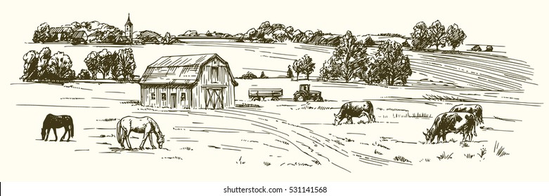 Cows and horses grazing on meadow. Hand drawn illustration.