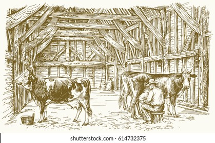 Cows inside a barn. Milking the cows. Vector illustration.