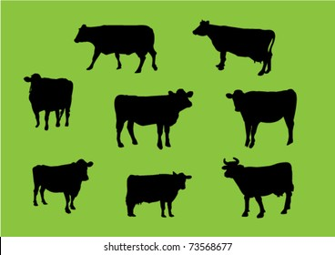 Cows silhouettes - vector