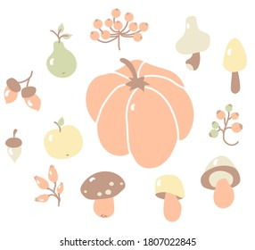 Cozy autumn. Colored set of autumn drawings. Harvest and autumn fruits - branches and berries, wild rose and viburnum, acorns and mushrooms, pumpkin and fruit, apple and pear. Vector. Isolated objects
