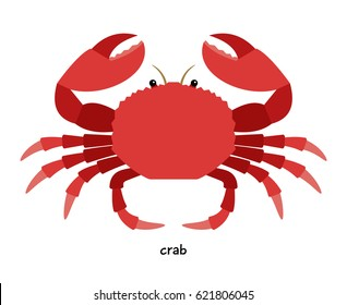Crab - aquatic animal destroying commercial shellfish