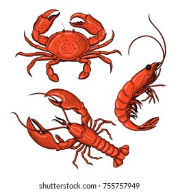 Crab, shrimp, lobster. Seafood. Vector illustration. Isolated image on white background. Vintage style.