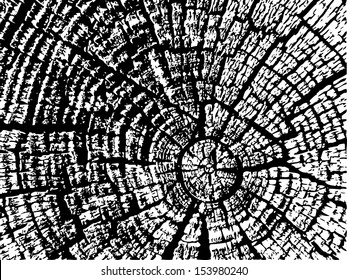 Cracked wood texture. Vector. eps 8